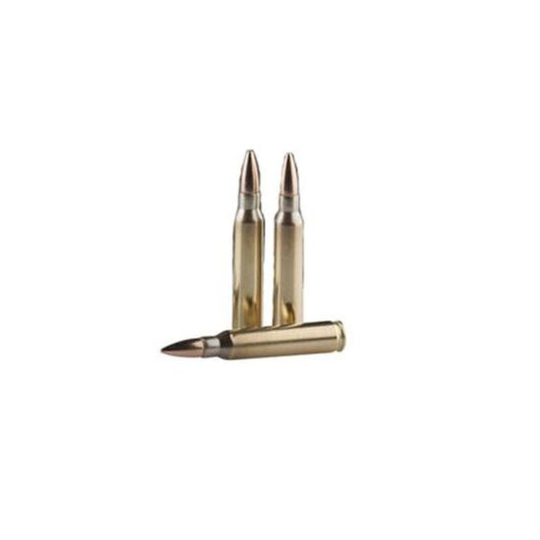 Prvi Partizan 5.56 NATO Ammunition 20 Rounds